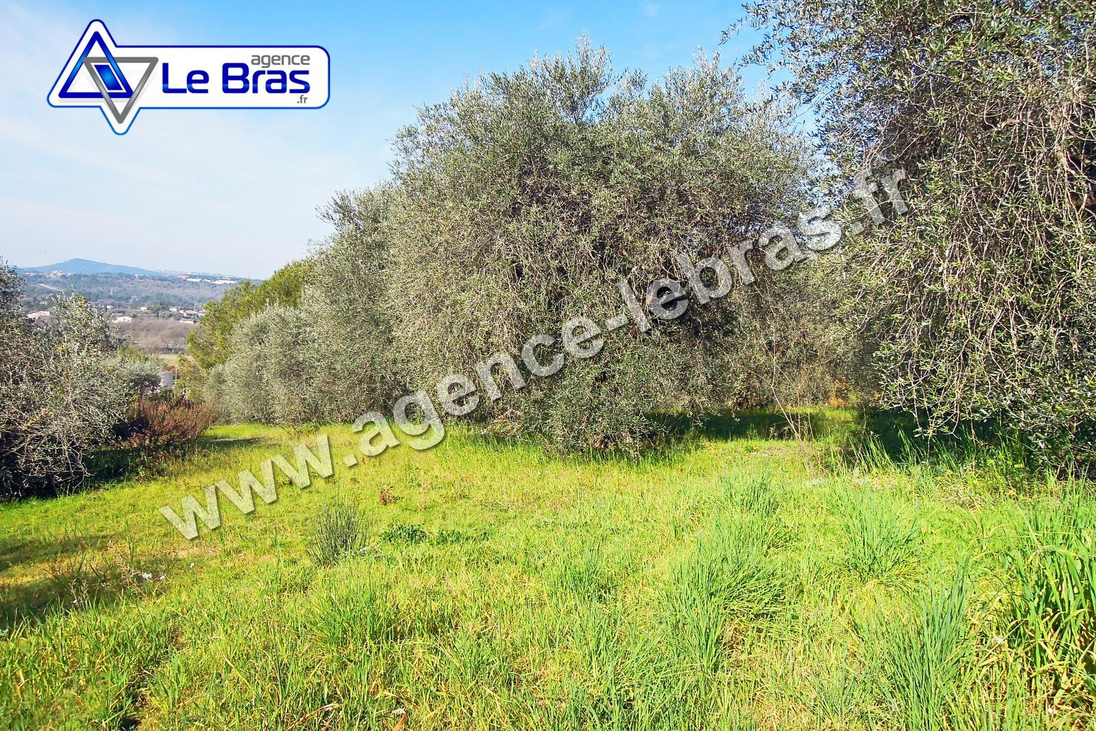 Offres de vente Terrain Mouans sartoux 06370